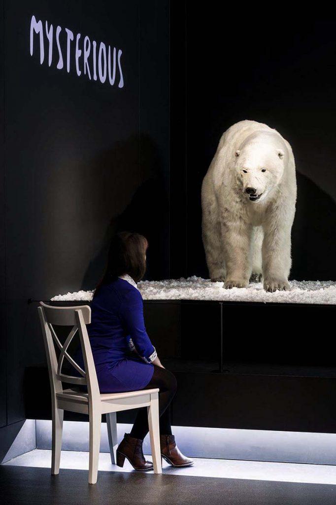 Climate Change exhibition design