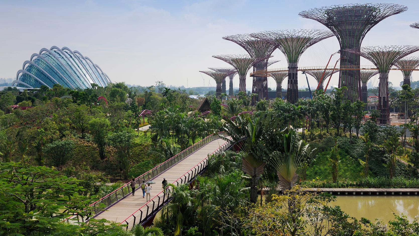 Environmental designers | Attraction park designers